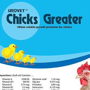 Chicks Greaters